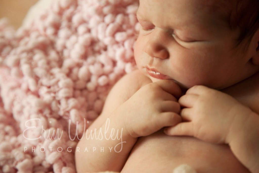 Close up Newborn Baby Photograph Sydney
